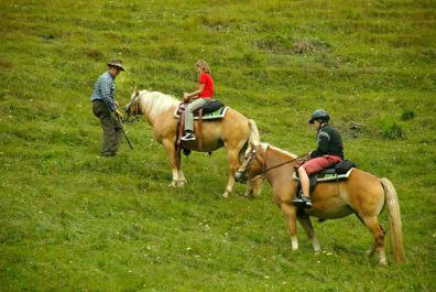 Guided half-day trail rides with children ages 10 and up