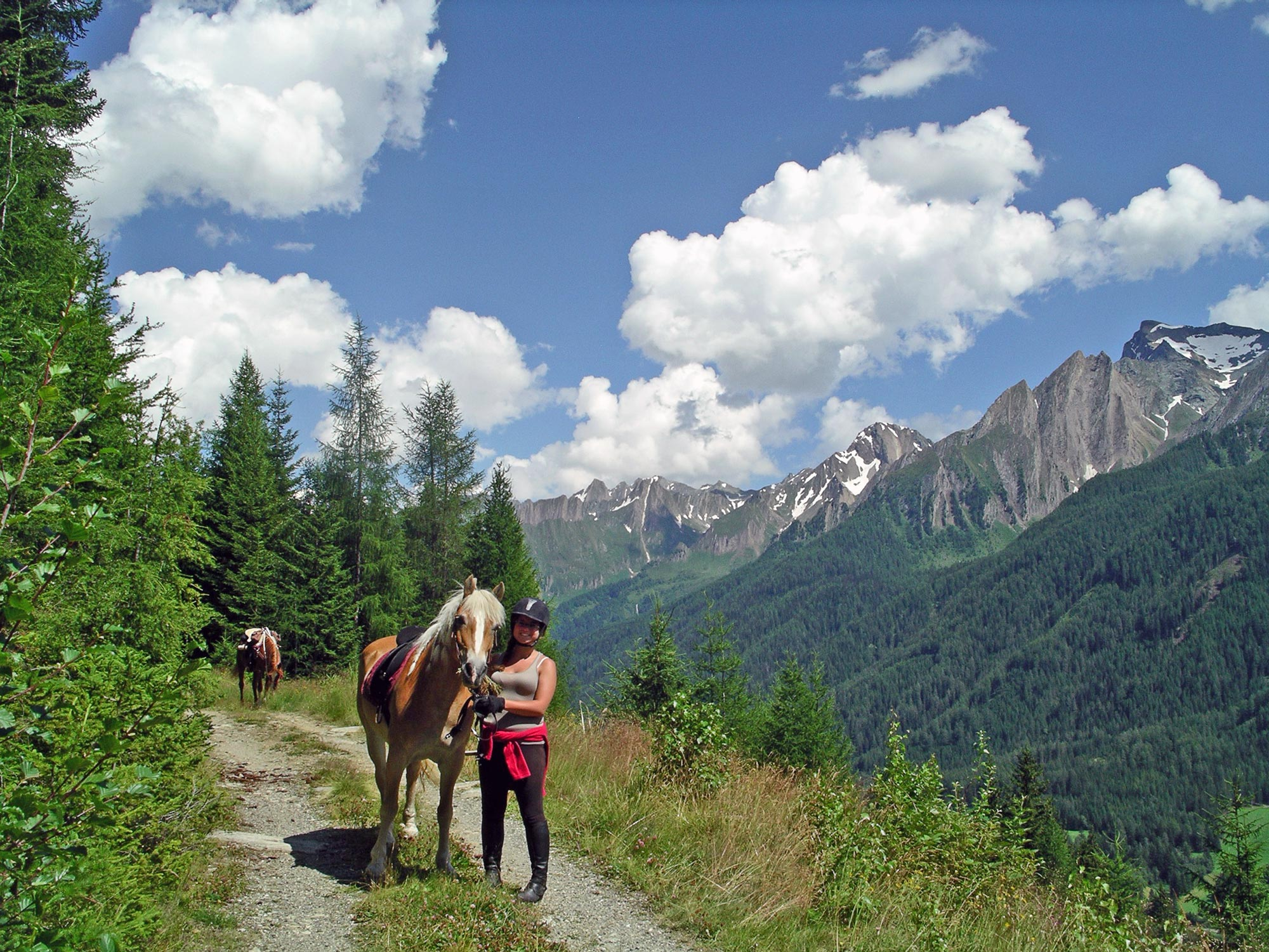 Guided all-day trail ride near Sterzing