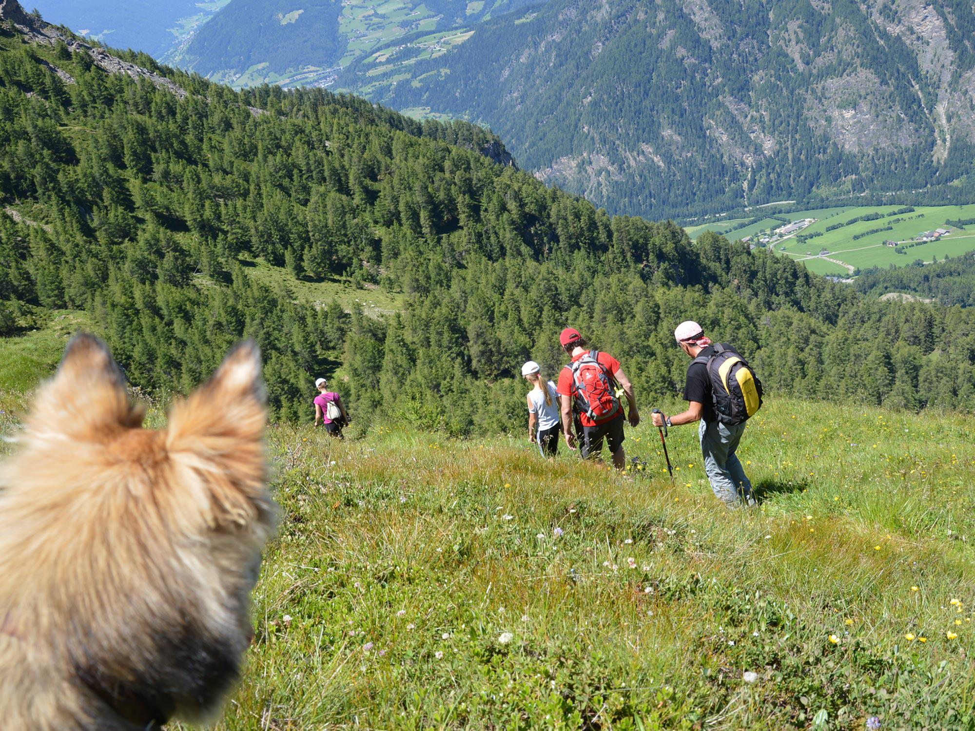 Hiking expedition with our guests