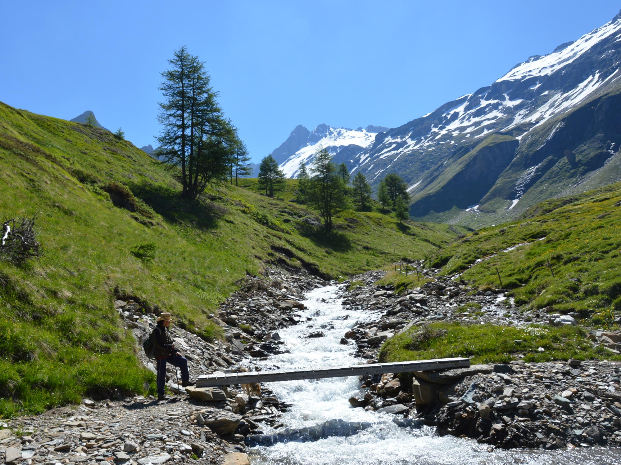 Hiking holidays in Pfitschertal, South Tyrol