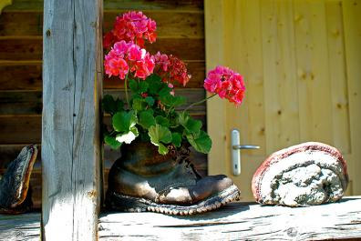 Hiking-boot planter