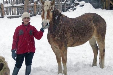 Our horses enjoy their freedom in winter, too